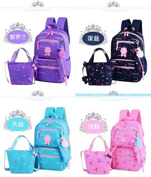Fashion Backpack 2Pcs Set