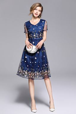Blue Mesh Embroidery Lace Dress
