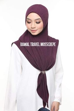 BAWAL TRAVEL AWNING MOSSCREPE