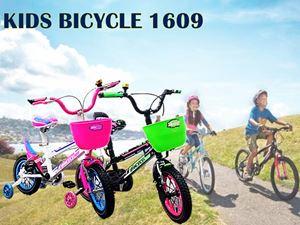 KIDS BICYCLE 1609 N00905