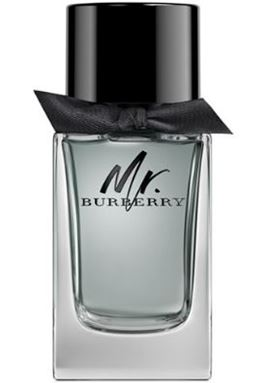 Burberry Mr. Burberry for men 100ml