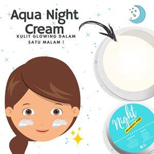 Night Cream Mayla Advance (10g)