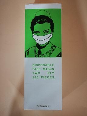 DISPOSABLE FACE MASK 2 PLY (100PCS)