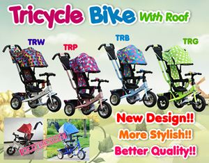 NEW DESIGN ! TRICYCLE BIKE W ROOF
