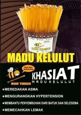 Madu Kelulut (10 sticks/pack)