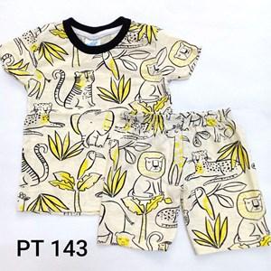 Playset (PT143)