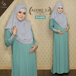 Audre Lacey Dress : Spa Green