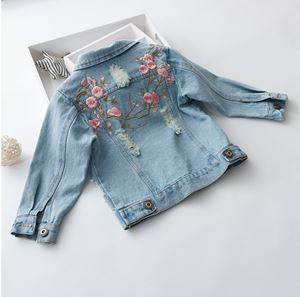 DEERA EMBROIDERED DENIM JACKET