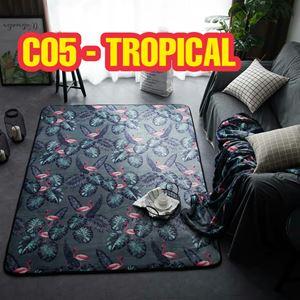 C05 - Tropical