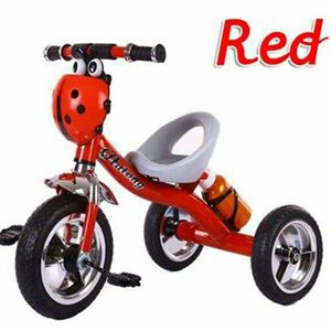 Ladybug tricycle with bottle
