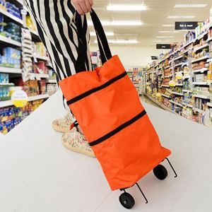 Portable Bag Cart Case