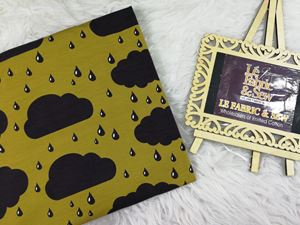 CLOUD & RAIN 0270119