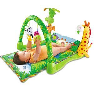 Rainforest Playgym