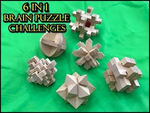 6 In 1 Brain Puzzle Challenges