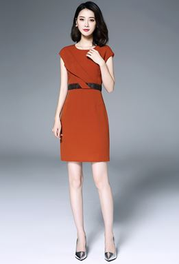 OL Professional Dress