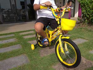 Leho bike Sport ( small )