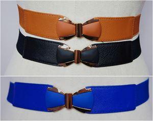 BLT42 - Plussize Stretch Buckle Belt