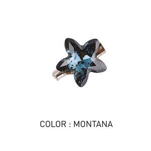Brooch Star Montana