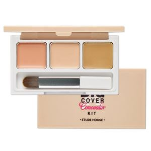 ETUDE HOUSE Big Cover Concealer Kit 3g