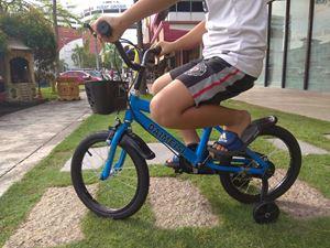 Kids bicycle daineisi Sport ( Big )