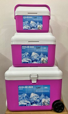 COOLER BOX GINT - PURPLE