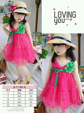 @  G091/12 PINK & GREEN FLOWER DRESS