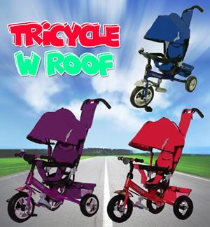 Tricycle w Roof