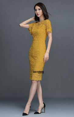 Lace Embroidered Slim Dress