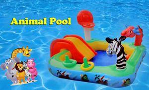 Animal pool (FREE PUMP)