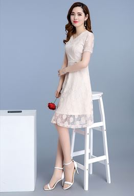 V-neck Lace A-Word Dress