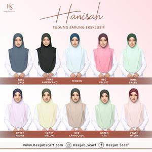 HANISAH 1.0