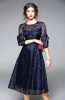Lantern Sleeves A word Swing Lace Dress
