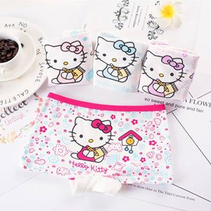 Hello Kitty Girls Panties 4pcs/set - 04