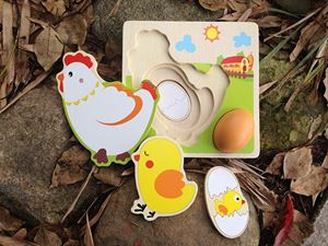 EGG BECOME CHICKEN BOARD N01081