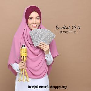 RAUDHAH 12.0
