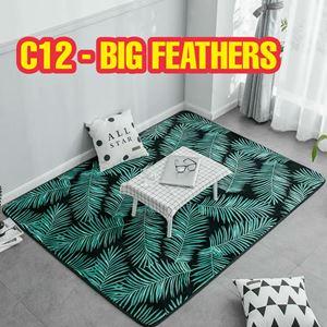 C12 - Big Feathers